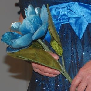 A Pretty Blue Prom Dress